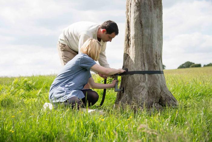 scala-chiocciola-albero-tronco-thor-ter-kulve-robert-mcintyre-canopy-09