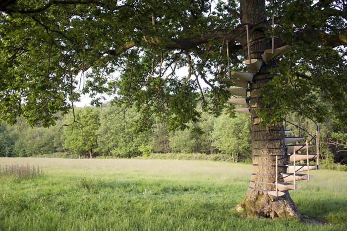 scala-chiocciola-albero-tronco-thor-ter-kulve-robert-mcintyre-canopy-10