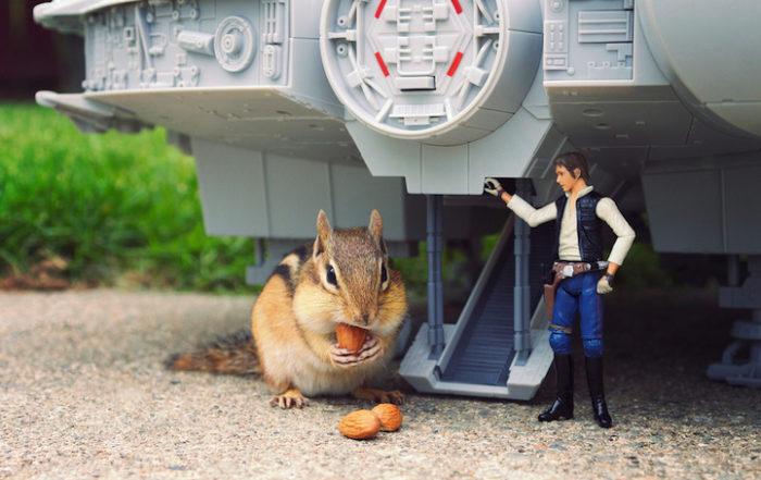 scoiattoli-giocano-con-statuine-star-wars-fotografia-chris-mcveigh-8