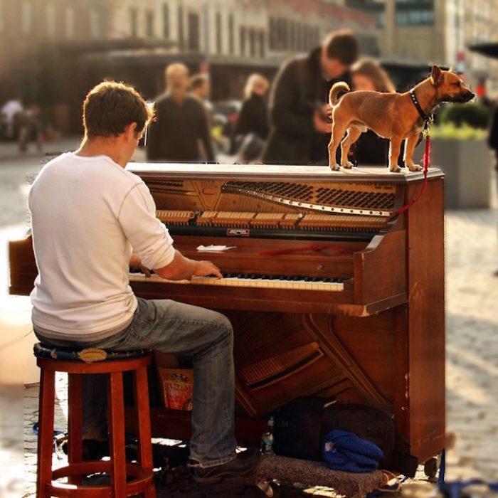 si-licenzia-per-suonare-il-pianoforte-viaggiando-mondo-dotan-negrin-12