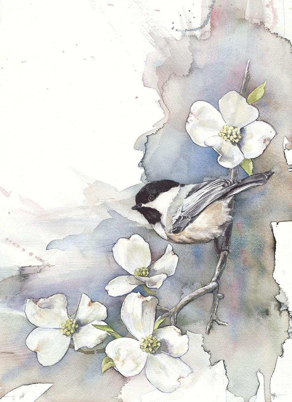 acquerelli-uccelli-anne-balogh-2