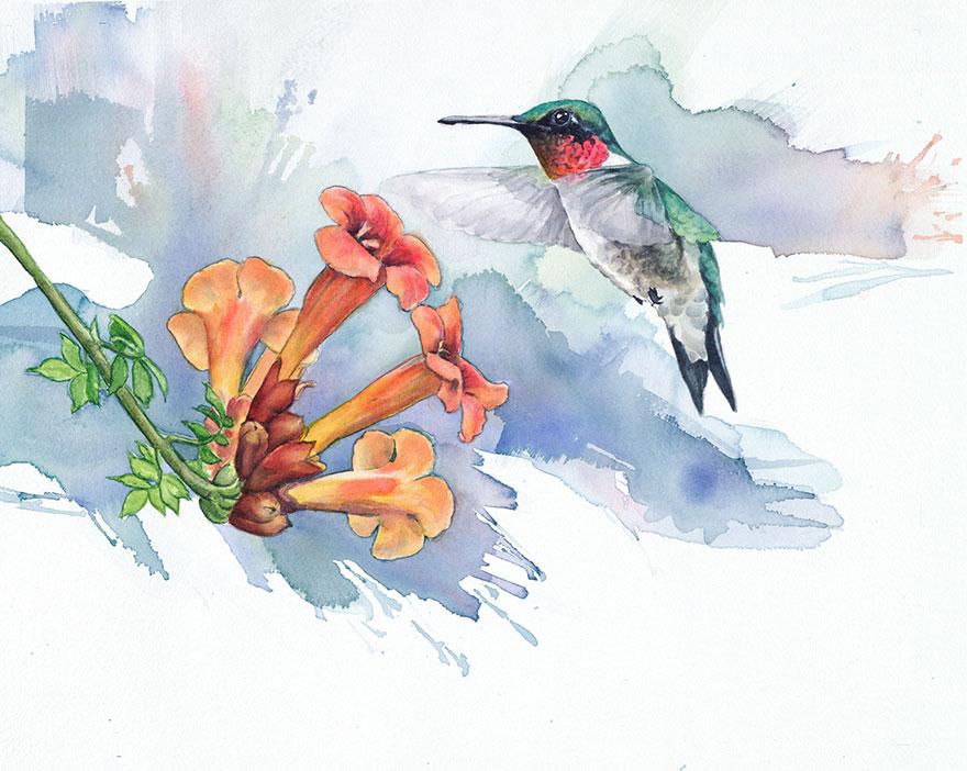 acquerelli-uccelli-anne-balogh-4