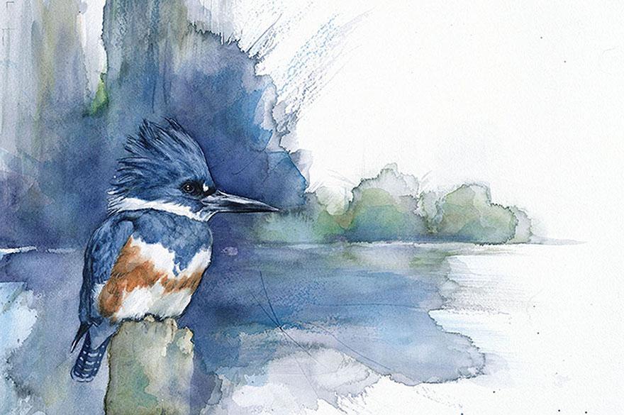 acquerelli-uccelli-anne-balogh-6