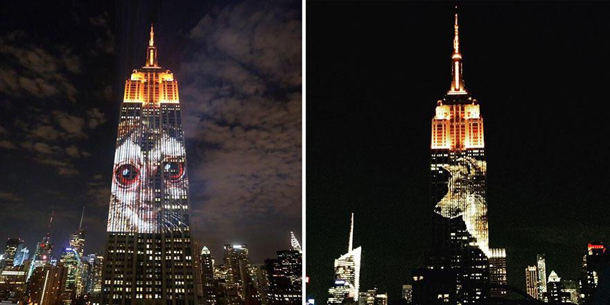 animali-pericolo-estinzione-immagini-proiettate-empire-state-building-new-york-04