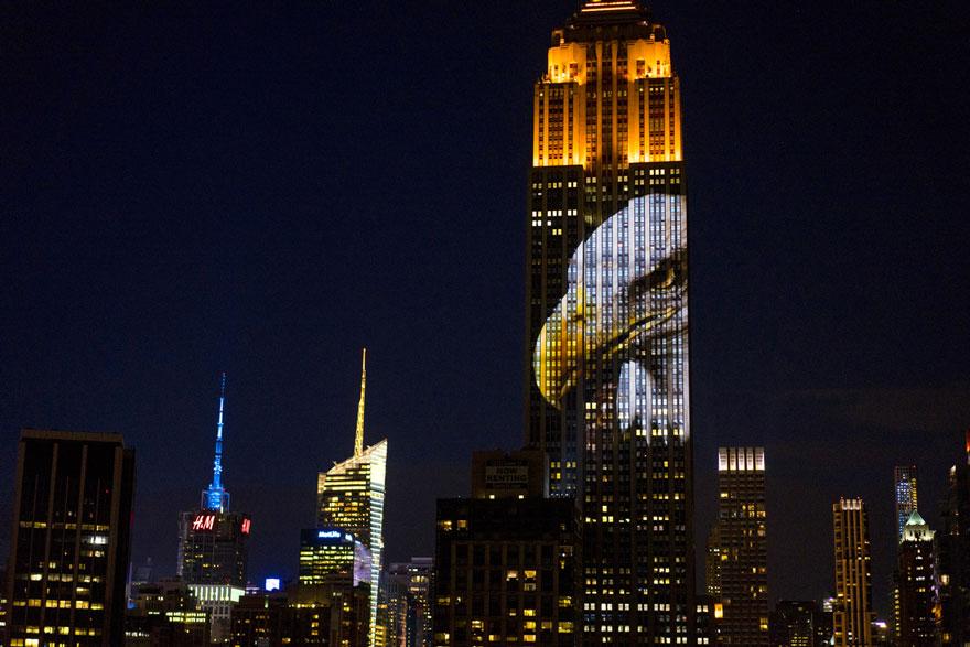 animali-pericolo-estinzione-immagini-proiettate-empire-state-building-new-york-05