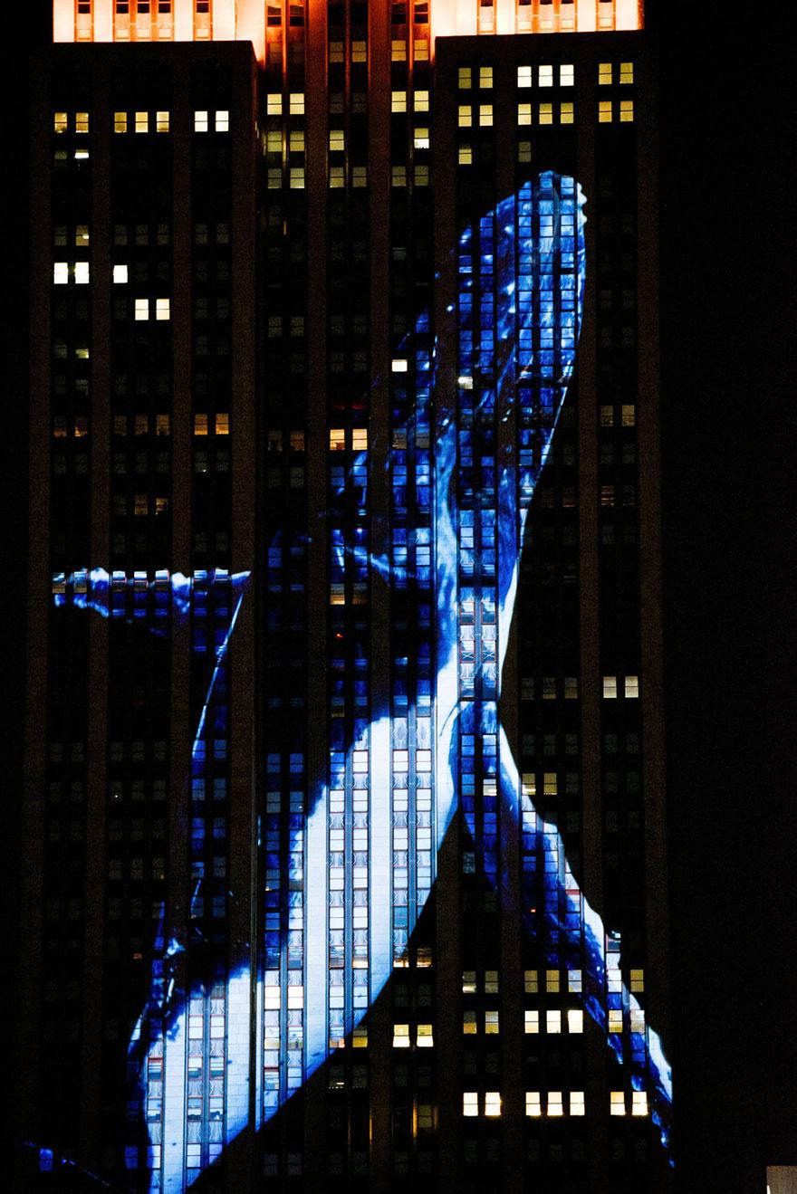 animali-pericolo-estinzione-immagini-proiettate-empire-state-building-new-york-09