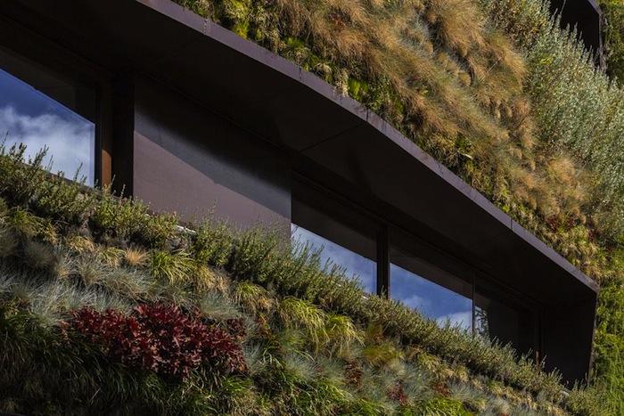 architettura-sostenibile-casa-facciata-piante-portogallo-house-travessa-do-patrocinio-03