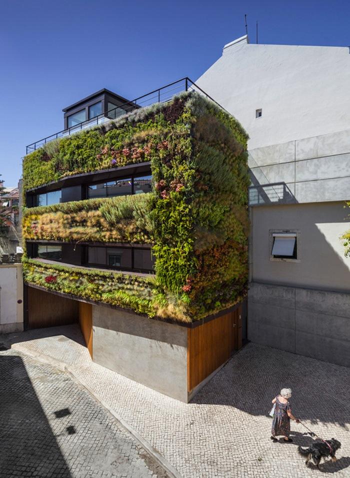 architettura-sostenibile-casa-facciata-piante-portogallo-house-travessa-do-patrocinio-06