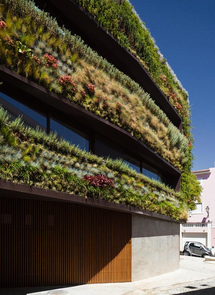 architettura-sostenibile-casa-facciata-piante-portogallo-house-travessa-do-patrocinio-07