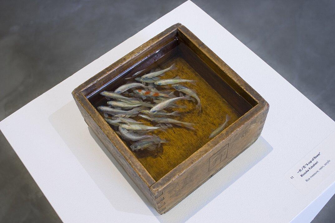 arte-iperrealistica-pittura-scultura-pesci-rossi-resina-riusuke-fukahori-3