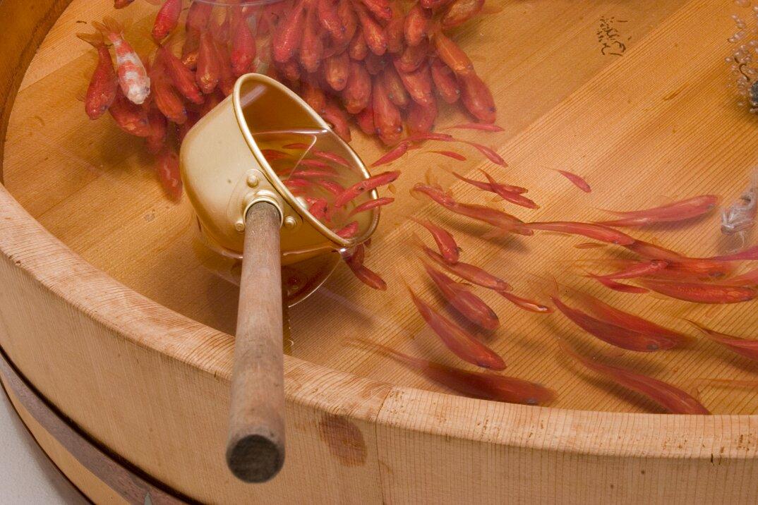 arte-iperrealistica-pittura-scultura-pesci-rossi-resina-riusuke-fukahori-7