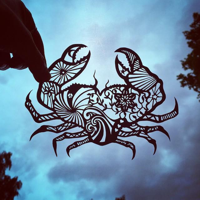 arte-ritagli-carta-animali-natura-jo-chorny-13