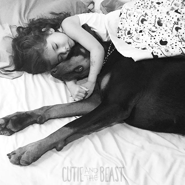 bambina-dobermann-cutie-and-the-beast-cane-buddah-siena-02
