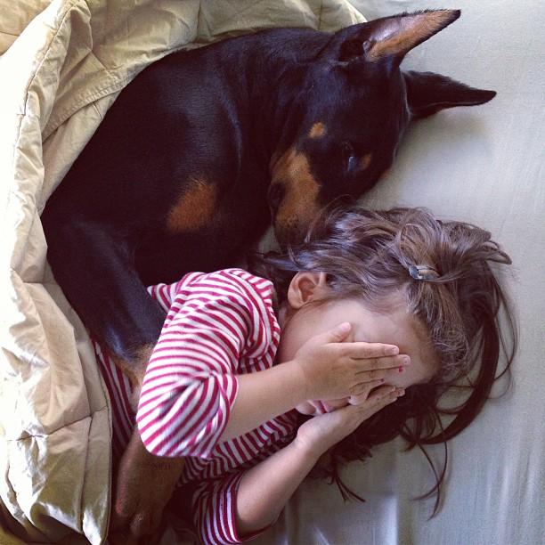 bambina-dobermann-cutie-and-the-beast-cane-buddah-siena-14