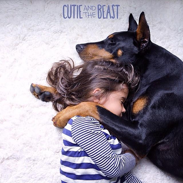bambina-dobermann-cutie-and-the-beast-cane-buddah-siena-17