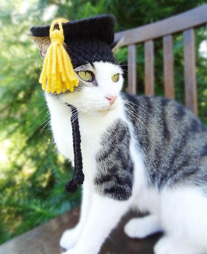 cappelli-animali-uncinetto-fatti-mano-meredith-langley-06