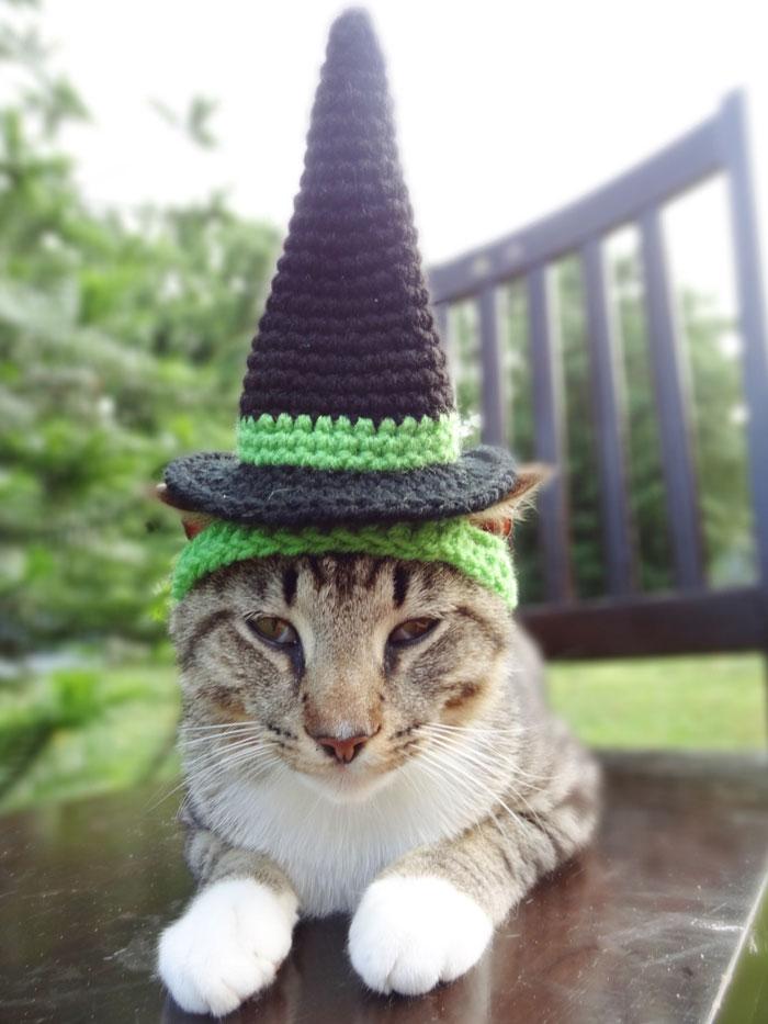 cappelli-animali-uncinetto-fatti-mano-meredith-langley-11