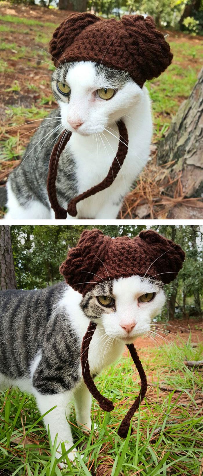 cappelli-animali-uncinetto-fatti-mano-meredith-langley-13