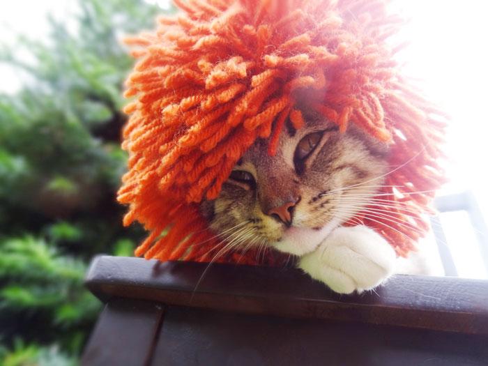 cappelli-animali-uncinetto-fatti-mano-meredith-langley-16
