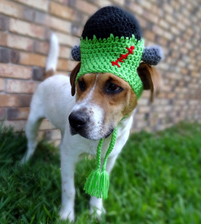 cappelli-animali-uncinetto-fatti-mano-meredith-langley-20