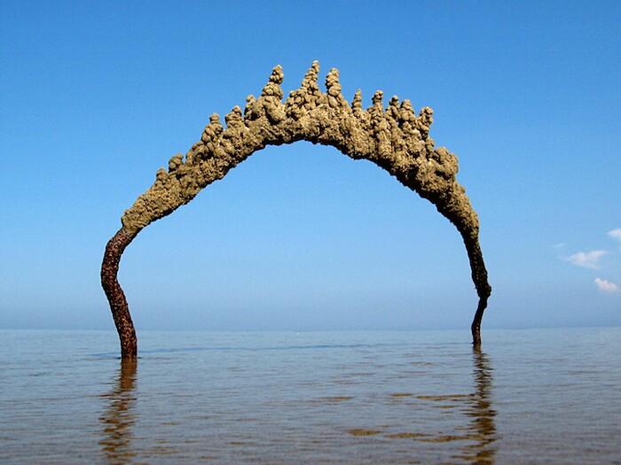 castelli-di-sabbia-sculture-gotiche-matthew-kaliner-01