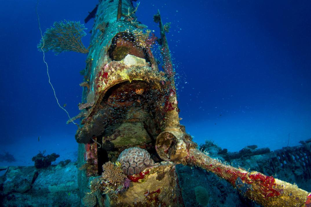 cimitero-sottomarino-aerei-seconda-guerra-mondiale-abbandonati-brandi-mueller-09