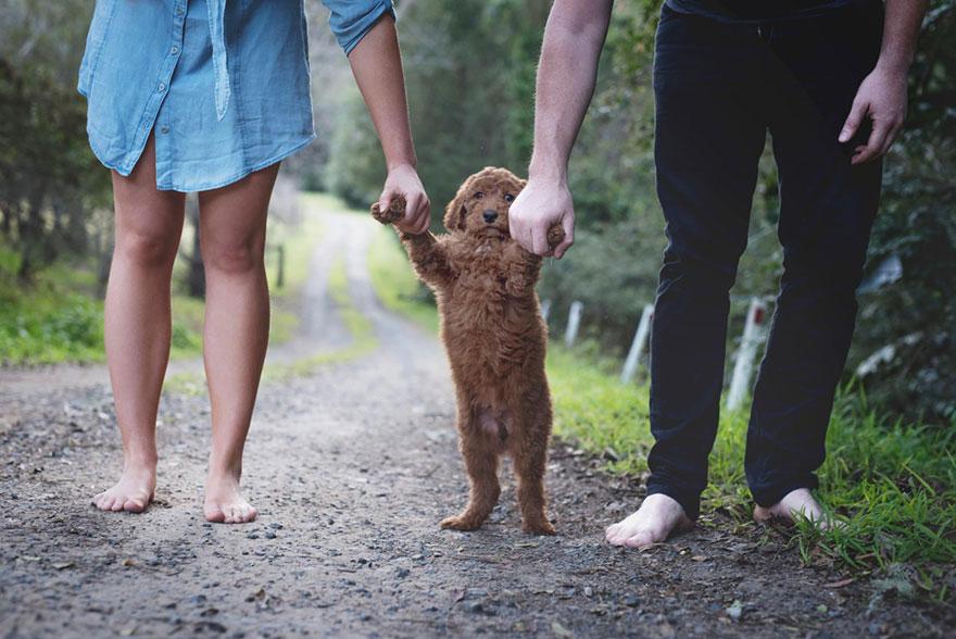 coppia-neonato-cane-elisha-minnette-fotografia-03