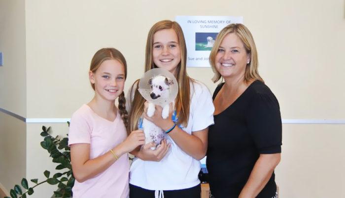 cucciolo-cane-strano-cicatrici-adottato-lucky-2