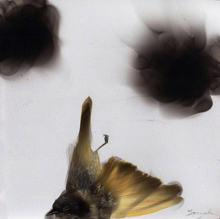 dipinti-fiamma-fuliggine-candela-fumage-sfumato-steven-spazuk-4