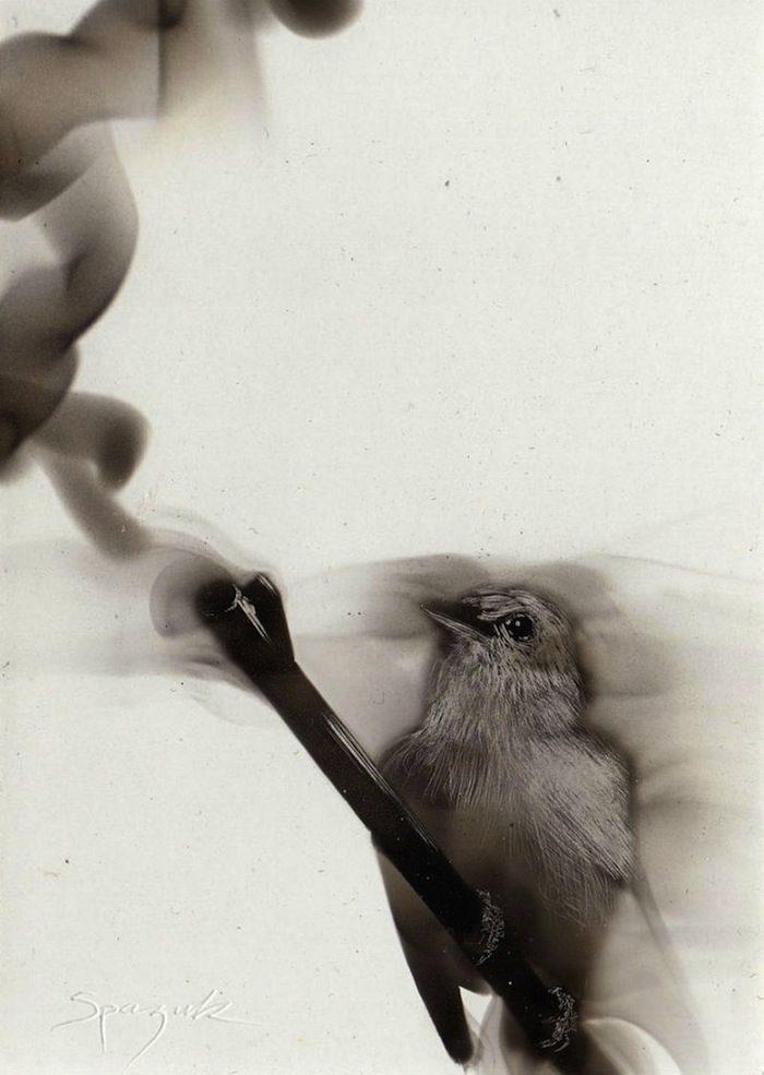 dipinti-fiamma-fuliggine-candela-fumage-sfumato-steven-spazuk-6