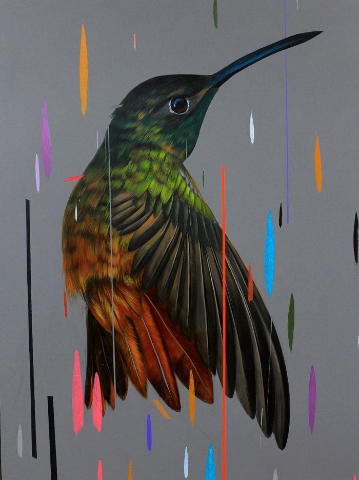 dipinti-uccelli-colori-acrilici-frank-gonzales-01