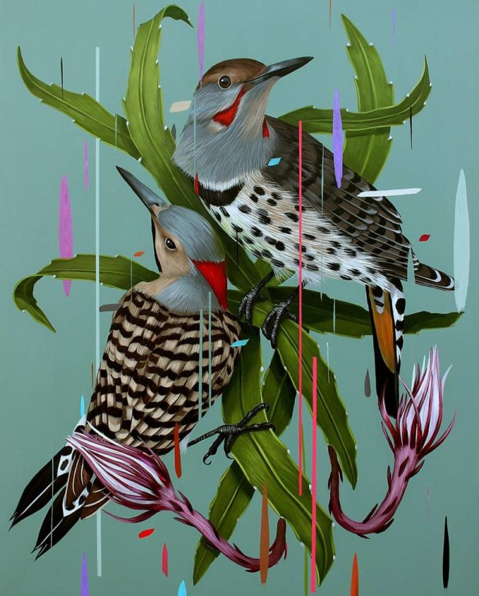 dipinti-uccelli-colori-acrilici-frank-gonzales-02