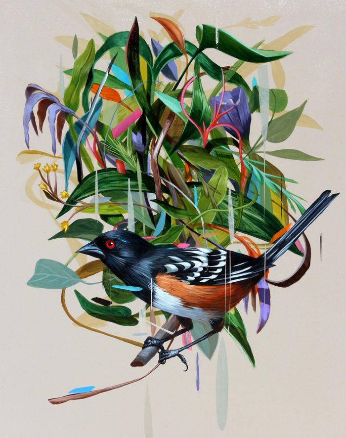 dipinti-uccelli-colori-acrilici-frank-gonzales-04