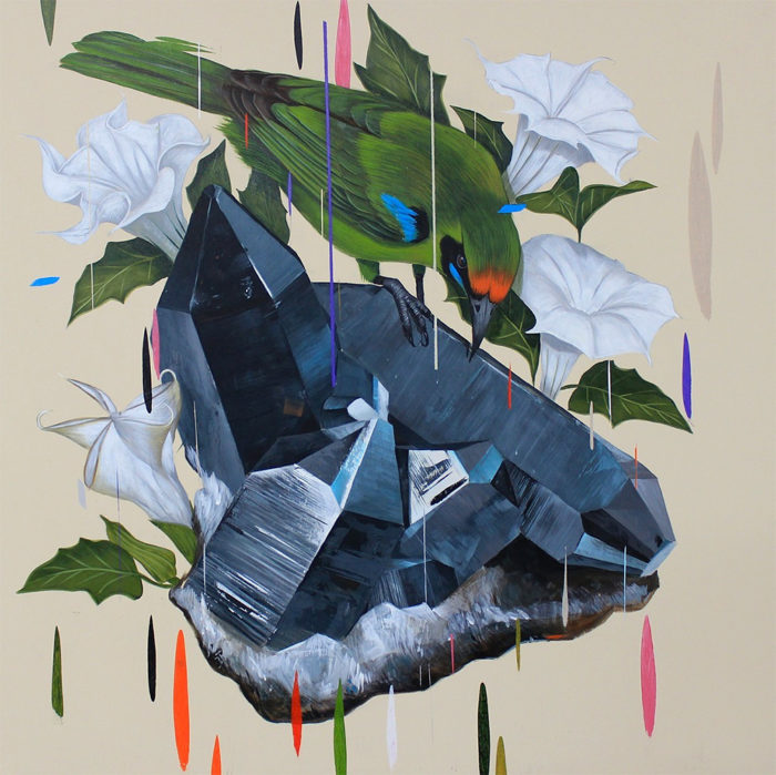 dipinti-uccelli-colori-acrilici-frank-gonzales-05