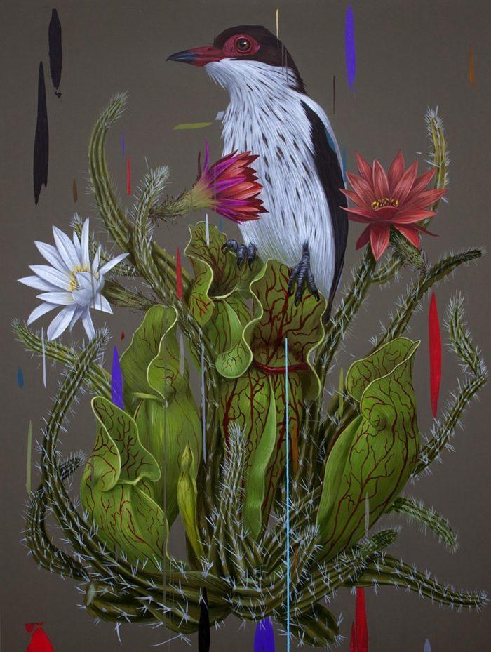 dipinti-uccelli-colori-acrilici-frank-gonzales-06