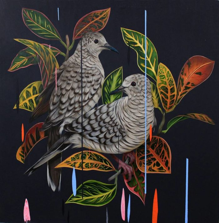 dipinti-uccelli-colori-acrilici-frank-gonzales-08