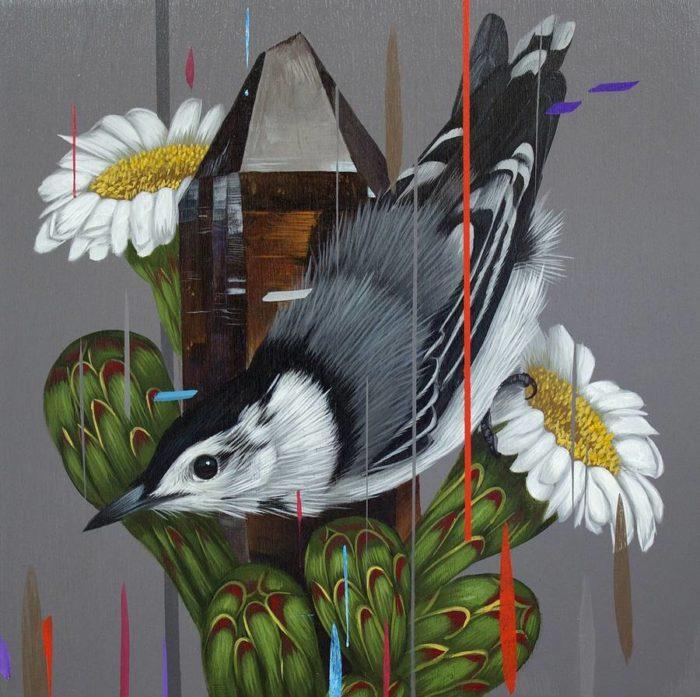 dipinti-uccelli-colori-acrilici-frank-gonzales-09