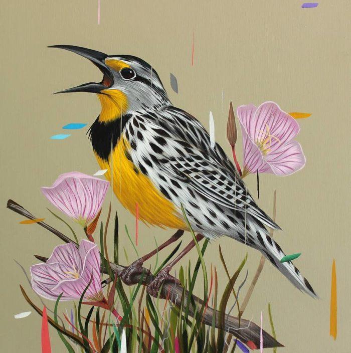 dipinti-uccelli-colori-acrilici-frank-gonzales-10