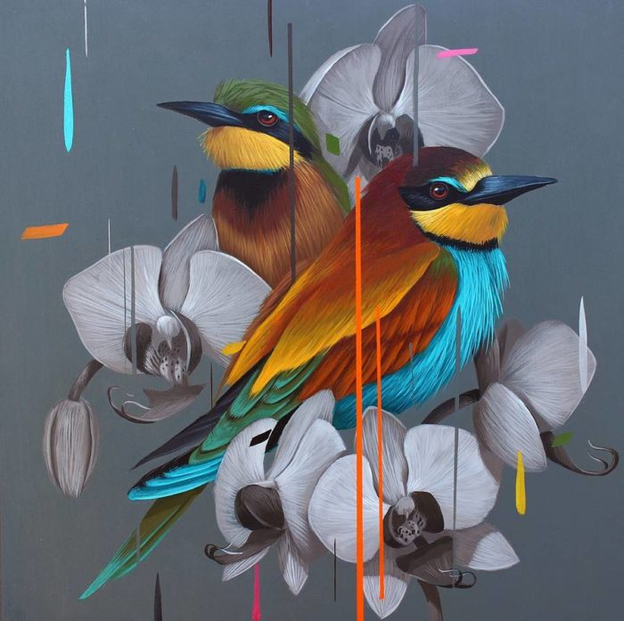 dipinti-uccelli-colori-acrilici-frank-gonzales-12