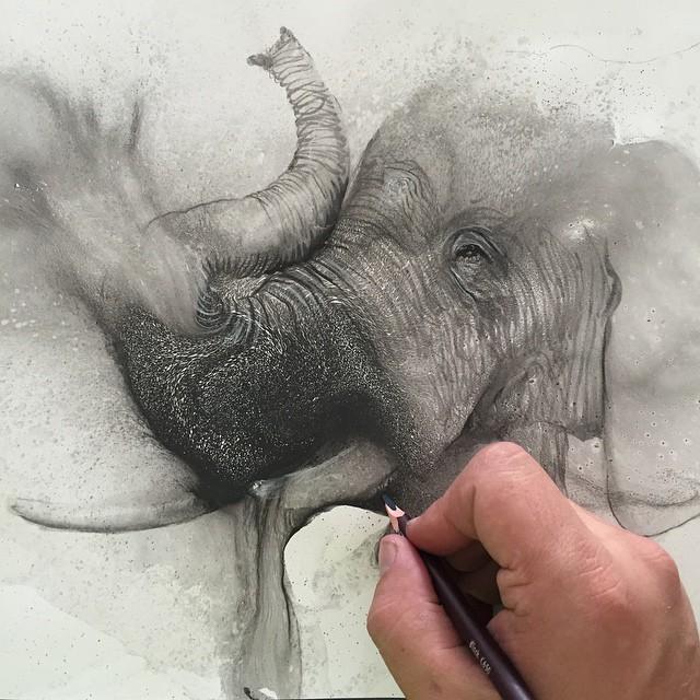 disegni-illustrazioni-animali-ritratti-macchie-caos-glen-ronald-01