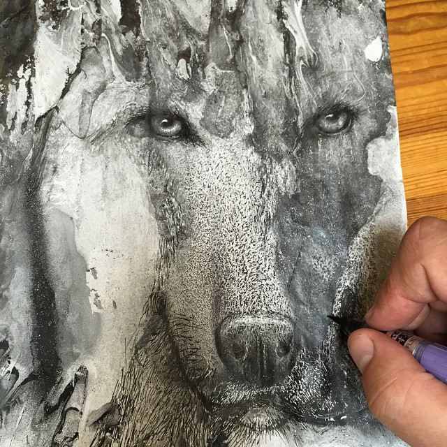 disegni-illustrazioni-animali-ritratti-macchie-caos-glen-ronald-02