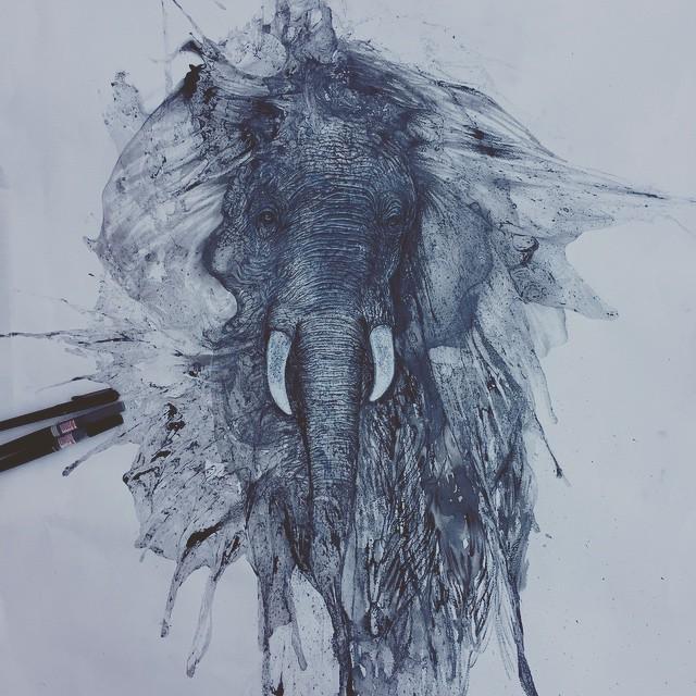 disegni-illustrazioni-animali-ritratti-macchie-caos-glen-ronald-03