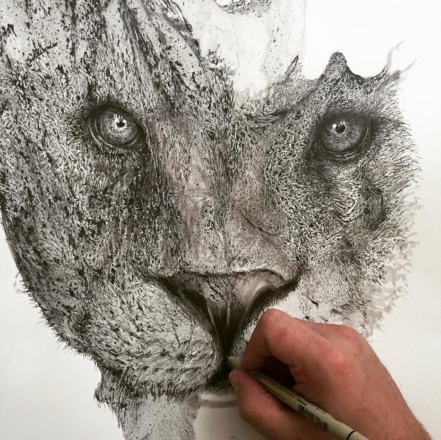 disegni-illustrazioni-animali-ritratti-macchie-caos-glen-ronald-09