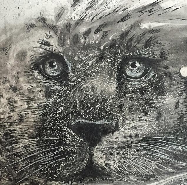disegni-illustrazioni-animali-ritratti-macchie-caos-glen-ronald-12