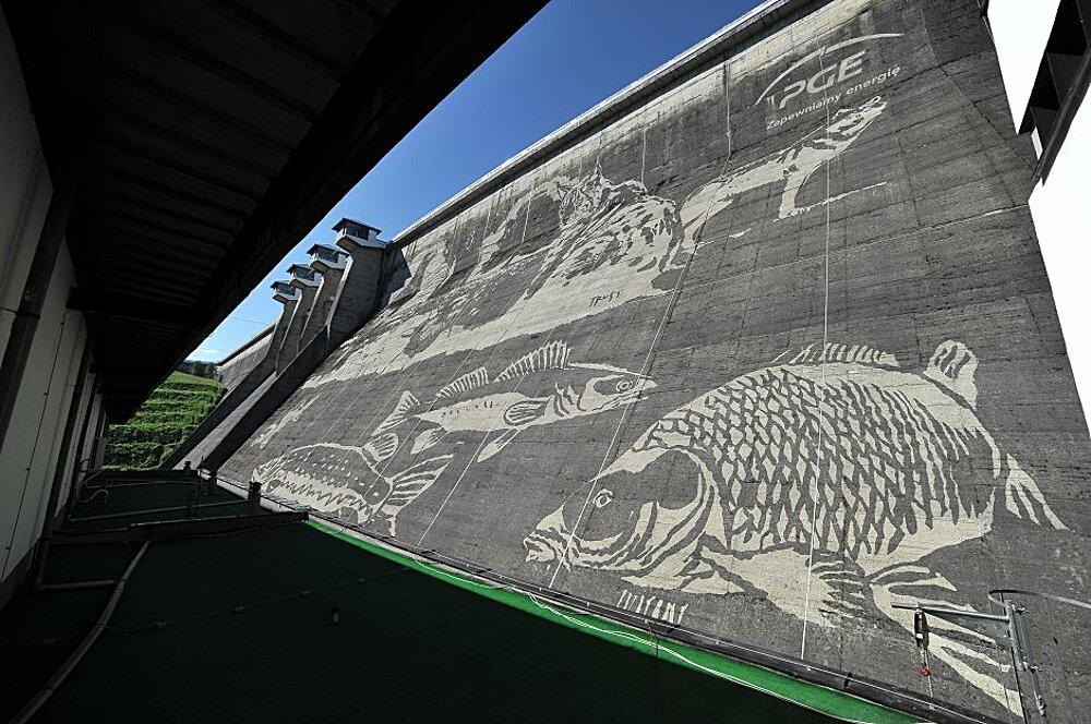 eco-murale-diga-solina-polonia-street-art-06