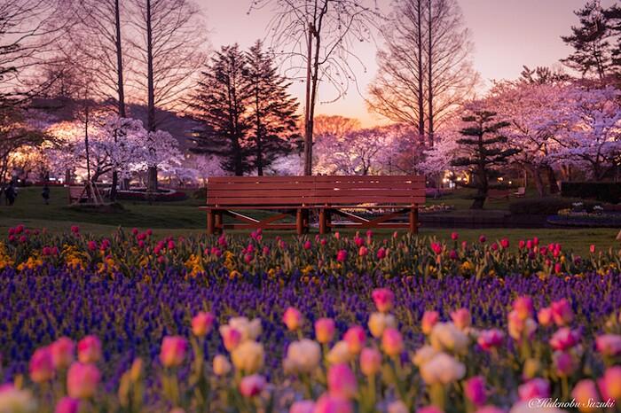 foto-paesaggi-giappone-hidenobu-suzuki-01-keb