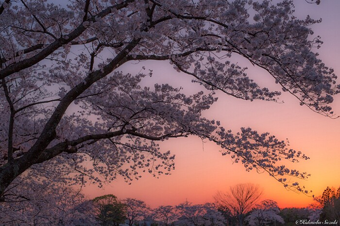 foto-paesaggi-giappone-hidenobu-suzuki-06-keb