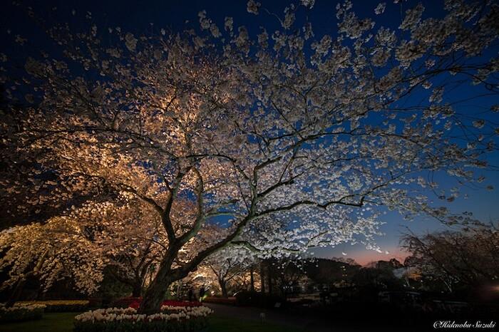 foto-paesaggi-giappone-hidenobu-suzuki-15-keb