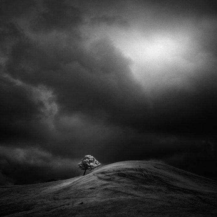 fotografia-infrarossi-alberi-solitari-california-nathan-wirth-5