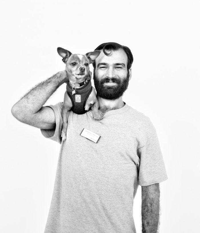 fotografia-ritratti-animali-cani-gatti-volontari-jesse-freidin-09